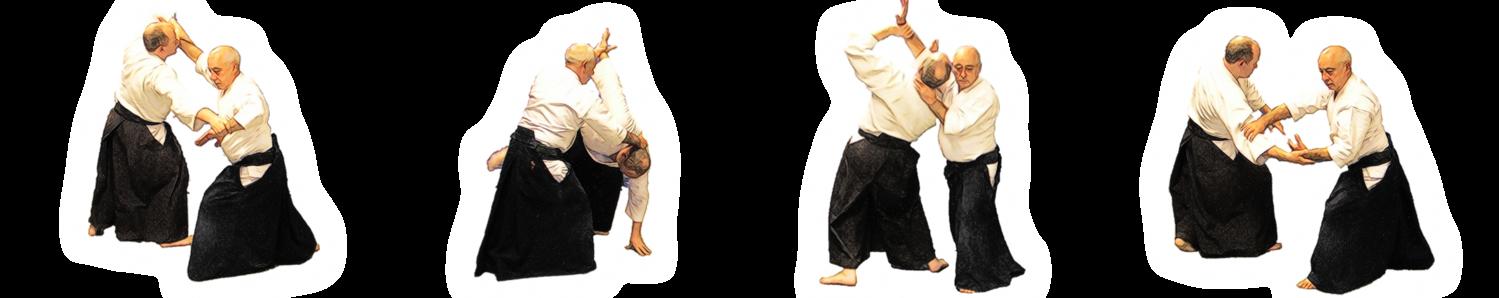 Aikido Intensive